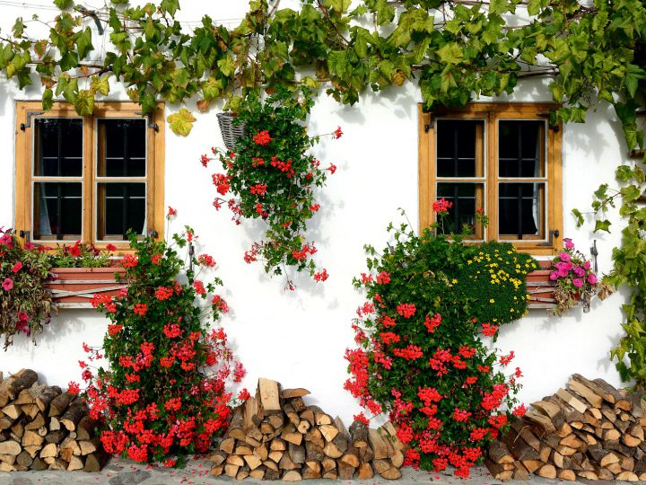 How to maximise your property's curb-appeal